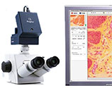 Cell Biology Tools
